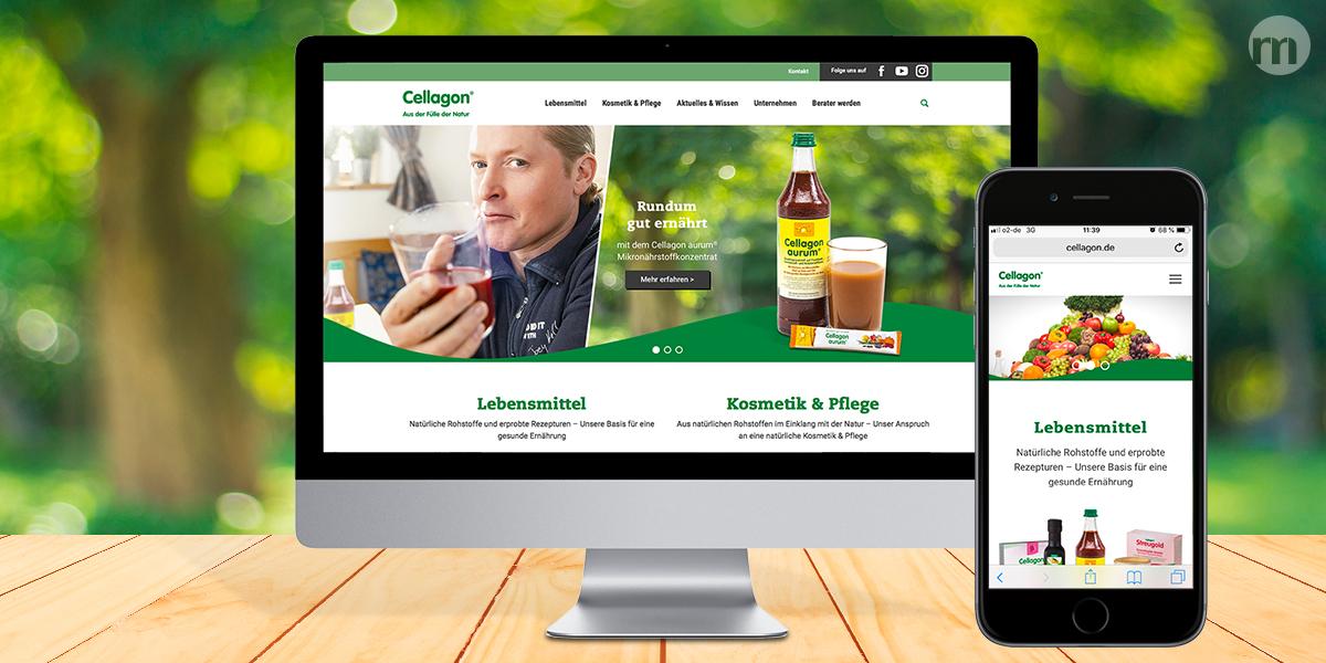 Website Ansicht auf Monitor und Smartphone